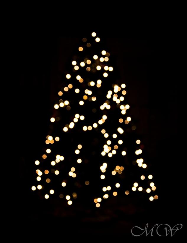 christmas 5 (1 of 1)