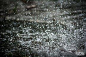 Edmonton floodings-3